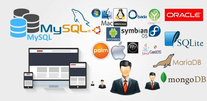 6 Komponen Sistem Database